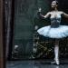 05_01_2019_Balletto di S. Pietroburgo_La Bella Addormentata_Gigi_Fratus (25 di 29)
