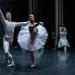 05_01_2019_Balletto di S. Pietroburgo_La Bella Addormentata_Gigi_Fratus (26 di 29)