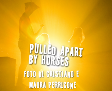 Pulled Apart By Horses, Photogallery