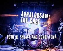 Appaloosa @ The Cage Theatre