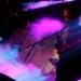 Acid Mother Temple_Planet_Pek-10