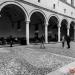 JAZZMI_2020_ARIANNA_MASINI_CITY_FLOWERS_8_0616_Erminio_Garotta