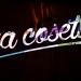 Fisher_nacosetta_Bruno-1