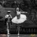 05_01_2019_Balletto di S. Pietroburgo_La Bella Addormentata_Gigi_Fratus (15 di 29)