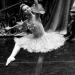 05_01_2019_Balletto di S. Pietroburgo_La Bella Addormentata_Gigi_Fratus (6 di 29)