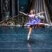 05_01_2019_Balletto di S. Pietroburgo_La Bella Addormentata_Gigi_Fratus (7 di 29)