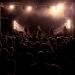 Mr.Feedback_ft_Stef-Burns_FG_Music_Photo_Gigi-Fratus-15-di-15