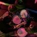 24_07_The-Owling-Orchestra_Pintupi_Gigi-Fratus_FG-Music-Photo-11